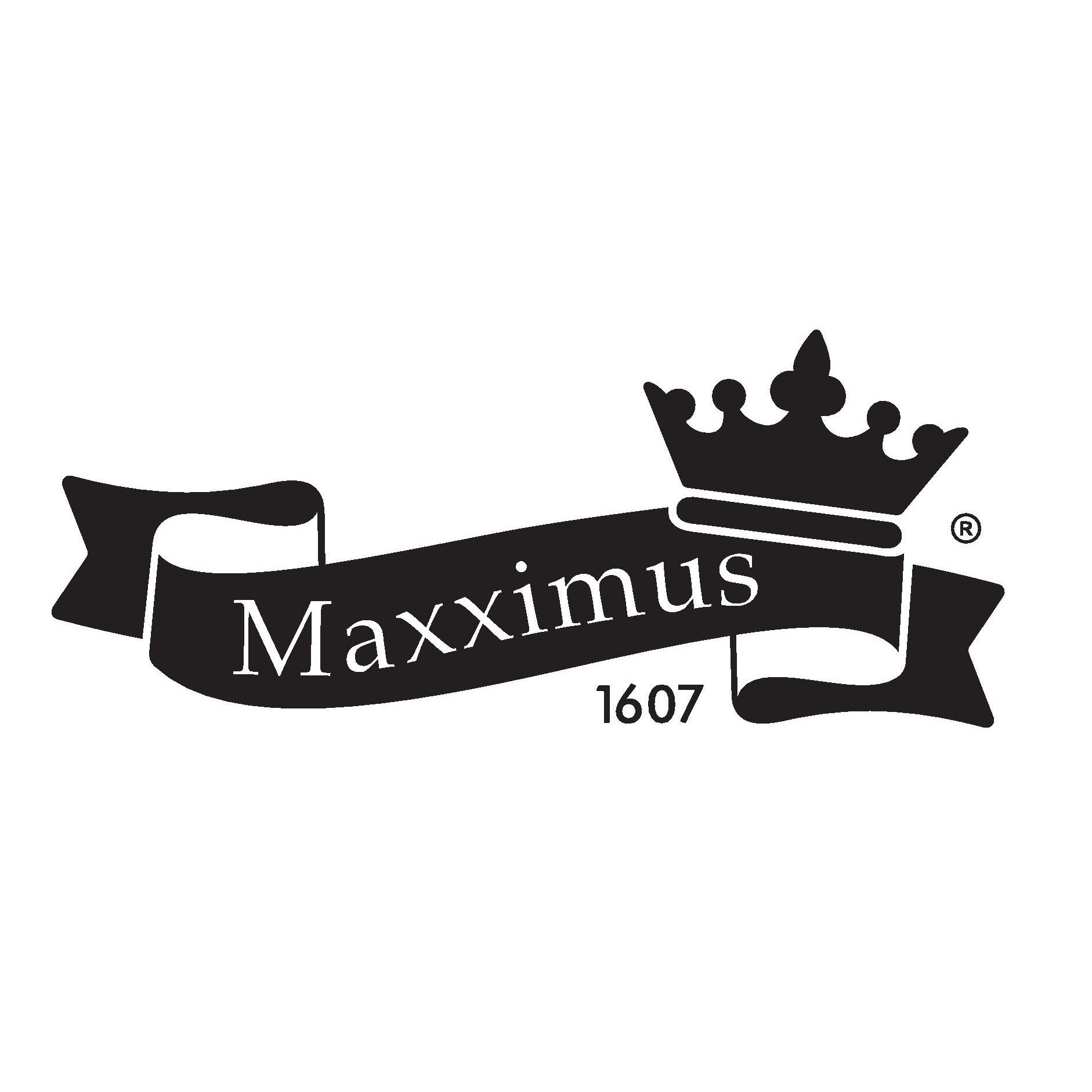 maxximus zalau value centre