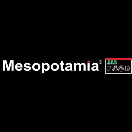 mesopotamia zalau